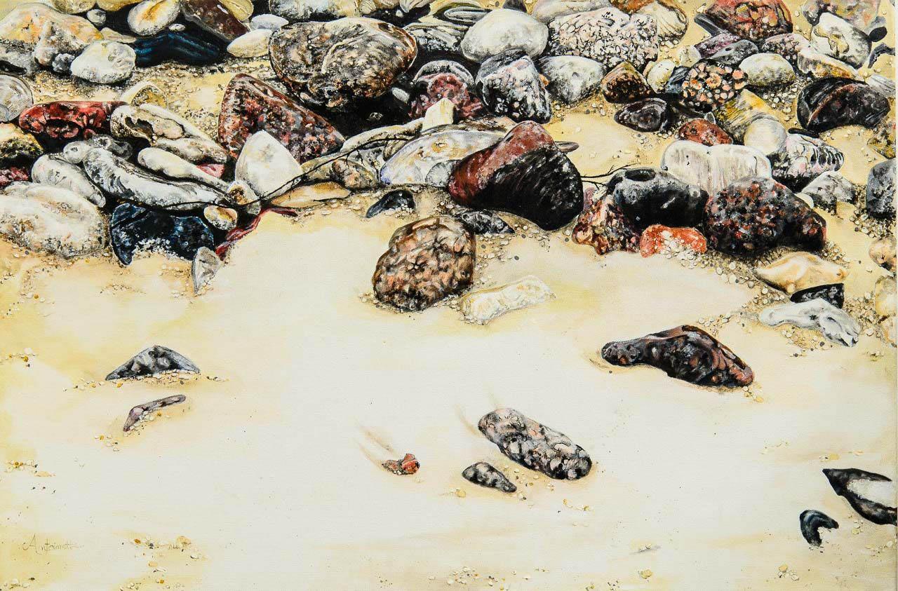 Beach Rocks-2