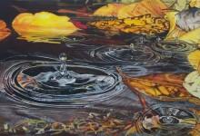 Fall Water
