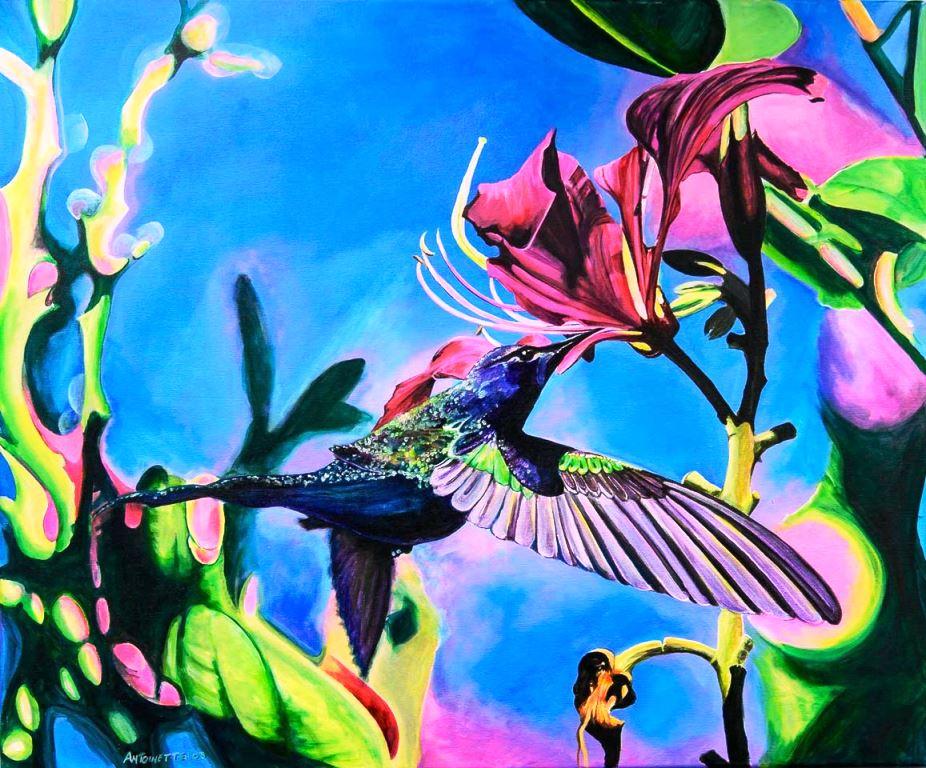 Humingbird (2)
